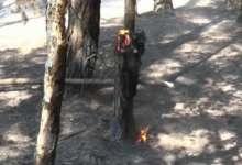 В соседнем районе горит лес